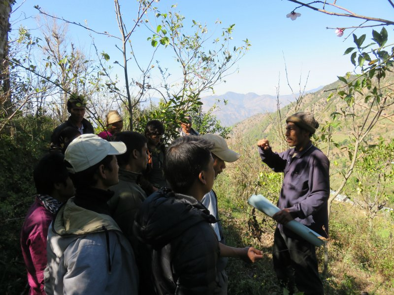 photo of group listening to trainer in the mountains
